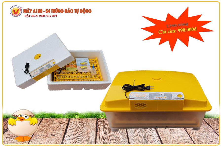 máy ấp trứng ánh dương a100 | Món Miền Trung